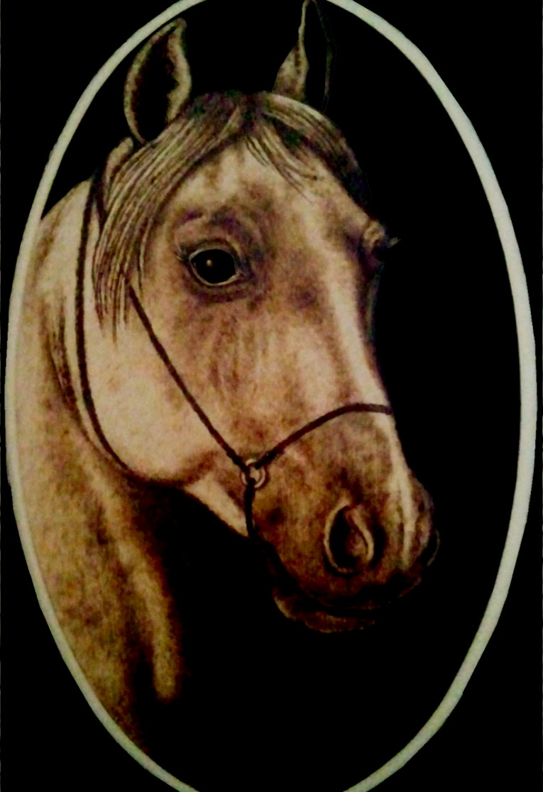 Pyrographic art of Arabian horse on oval wood.