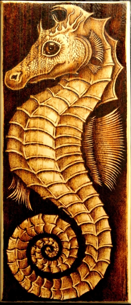 Don White's woodburned seahorse.